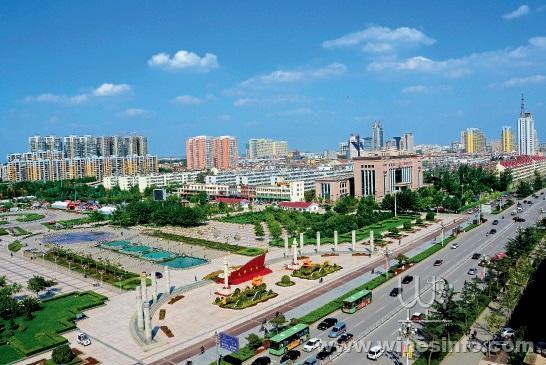 山东济宁高新区建立中国首个软木产业园区