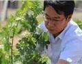 张军翔:葡萄酒定价水平急需提高,必须考虑好这三点