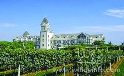 第九届民间葡萄酿酒大赛将在张裕国际葡萄酒城举办