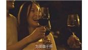 享受美酒,爱上智利:第四集