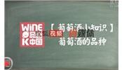 《品尝中国》:MW赵凤仪解答葡萄酒的品种