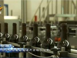 【视频新闻】贺兰山东麓葡萄酒产区稳步前进