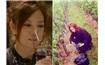 《中餐厅》第二季在赵薇法国酒庄录制
