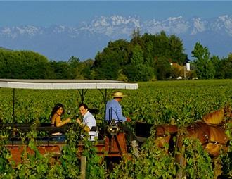 第四届世界葡萄酒旅游大会明年在智利举办
