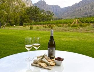 因电价上涨 南非葡萄酒生产商转向太阳能发电