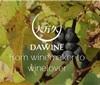 澳葡萄酒商Dawine在华布局区块链应对假酒难题