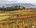葡萄牙葡萄酒之都:里斯本全攻略