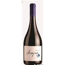 智利蓝色幻想庄园系列--黑比诺干红葡萄酒