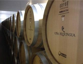 智利云端酒庄决定大力进军中国市场
