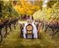 意大利葡萄酒旅游经济大数据公布