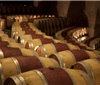 部分酒庄正用轻柔音乐让葡萄酒发酵出更好的味道