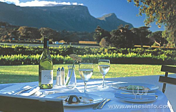 Wine-in-South-Africa.jpg