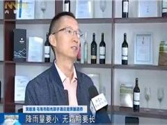 黄建清:酿好中国的葡萄酒