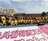 丹凤葡萄酒文化旅游节隆重开幕