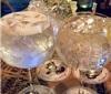 酒展攻略:「香港美酒佳肴巡礼」、「香港国际美酒展」入场前必睇