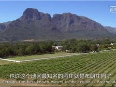 国外酿葡萄酒的庄园 每一个都不简单