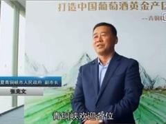 魅力湖南专题报道青铜峡葡萄酒产区