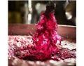 紅葡萄酒的釀造藝術——發酵中的提取
