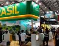 重视中国市场 巴西连续三年组团赴华参加葡萄酒展会
