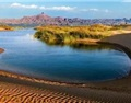 中国沙漠有机葡萄酒产地——乌海