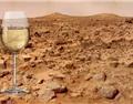 格鲁吉亚要在火星上酿造葡萄酒
