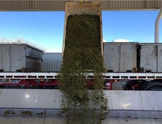 威龙在澳洲葡萄酒庄投产 将出口中国市场