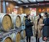 昌黎县葡萄酒产业转型升级调查