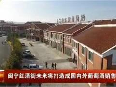 闽宁红酒街未来将打造成国内外葡萄酒销售集散地