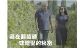 法国著名酒评家独创这套品酒论,5分钟揭秘葡萄酒选酒秘诀