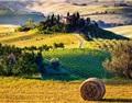 凌春鸣:托斯卡纳阳光的味道,意大利国酒奇安蒂的故事