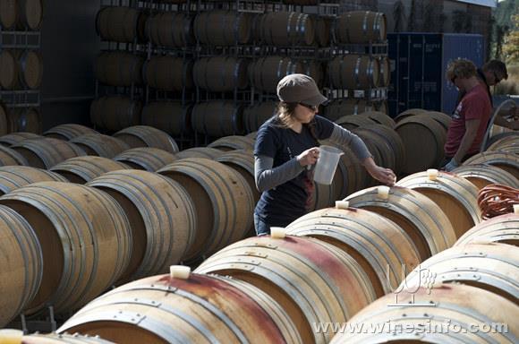 wm_spy-valley-wines_marlborough_03.jpg