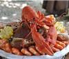 哪种葡萄酒适合搭配龙虾饮用?