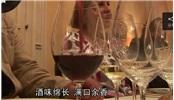 在波爾多品嘗智利葡萄酒