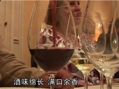 在波尔多品尝智利葡萄酒