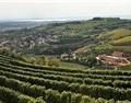 意大利Valpolicella未来三年不允许开发新的葡萄园