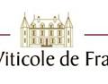 法国维蒂科尔酒园