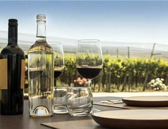 澳元貶值襲來 澳洲葡萄酒的野心與突圍