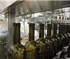 格鲁吉亚酒前7个月出口额增长6%