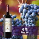 【巴斯蒂德梅洛干红葡萄酒】法国邦菲斯Bonfils酒庄原瓶原装进口红酒清场处理