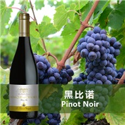 圣马特黑皮诺干红葡萄酒