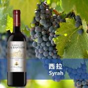 巴斯蒂德西拉干红葡萄酒