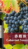 巴斯蒂德赤霞珠干紅葡萄酒