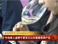 昌黎万亩酿酒葡萄全面进入采收季