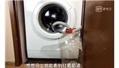 惡作劇 : 葡萄放入洗衣機中會怎樣
