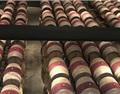 苹果酸-乳酸发酵和橡木制品的故事