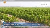 葡萄酒产业发展优势初显