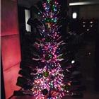 空酒瓶搭成的圣诞树