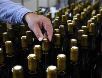 南非葡萄酒产业期待再一个丰收季