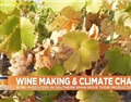 为什么西班牙葡萄酒制造商要把葡萄园搬到山上?