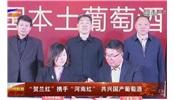 """""""賀蘭紅""""攜手""""河南紅""""共興國產葡萄酒"""